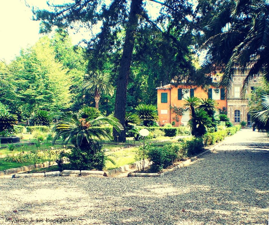 Pisa Botanical Garden.jpg
